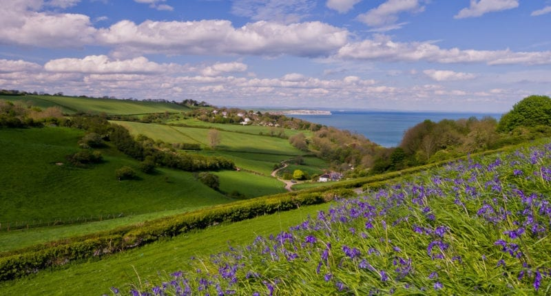 Culver from above Luccombe (Credit - Visit Isle of Wight)