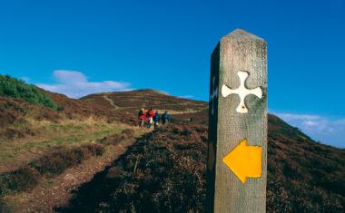St Cuthbert's Way waymarker