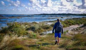 Stiffkey Saltmarshes near Wells-next-the-Sea