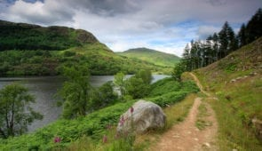 The Southern Upland Way along the banks of Loch Trool
