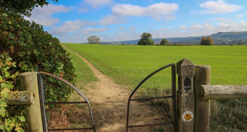 Cotswold Way Path