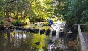 Walking across the stepping stones at Egton Bridge