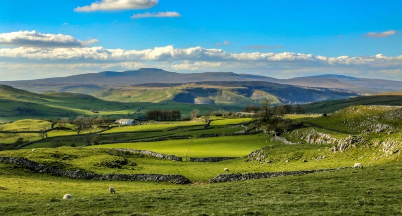 Landscape in the Yorkshire Dales