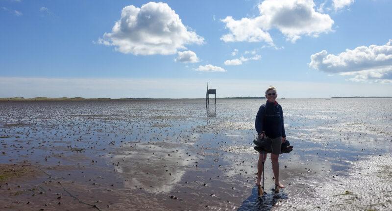 On the Pilgrim's Path to Lindisfarne