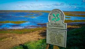 Stiffkey Saltmarshes on the Norfolk Coast Path