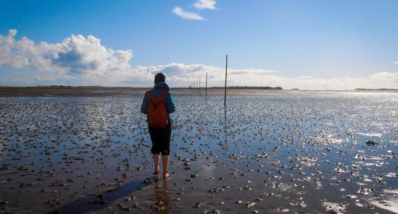 Walking across the Pilgrim's Path to Holy Island at low tide (Credit - Mari Leijo)
