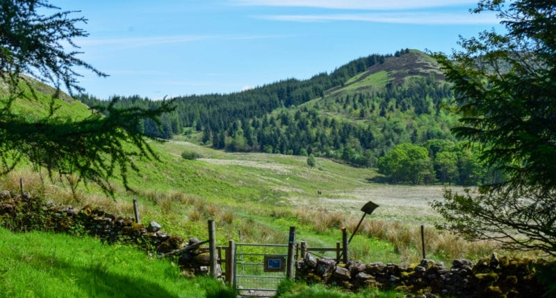 Glenny Hill on the Rob Roy Way