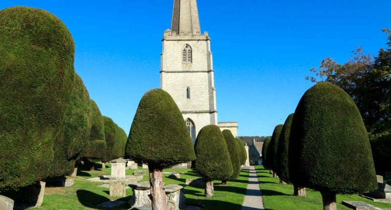 Yew Trees in St Mary's Churchyard in Painswick