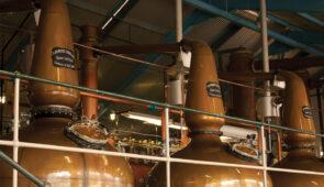 Tasting Tour, Laphroaig Distillery