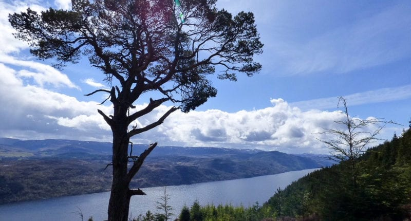 Incredible views of Loch Ness