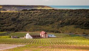 Rathfinny Wines, Alfriston, East Sussex