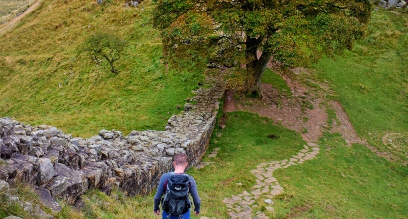 Descending to Sycamore Gap near Once Brewed