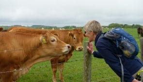Meeting the locals on the St Oswald's Way