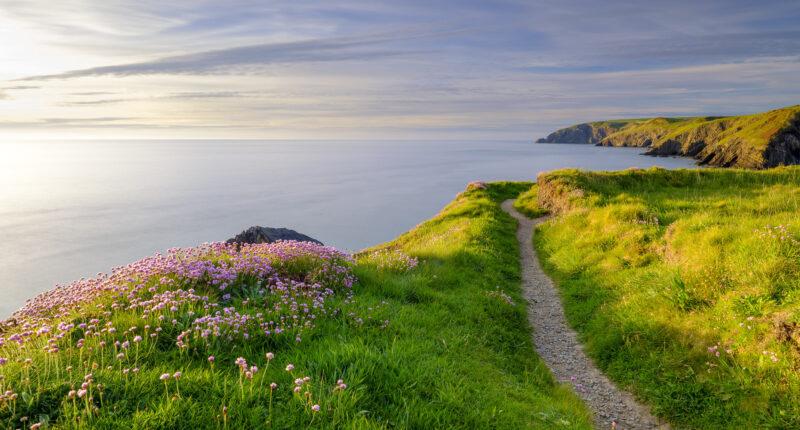 Pembrokeshire Coast Path and Ceibwr Bay