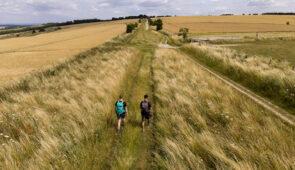 Walkers on the Ridgeway