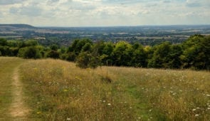 Views north-west from Whiteleaf Nature Reserve
