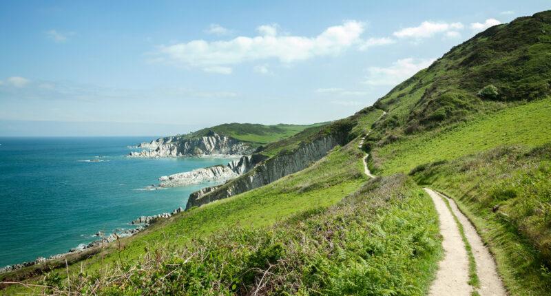 Coastal path towards Mortehoe, Devon