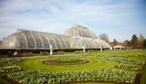 The Royal Botanic Gardens, Kew