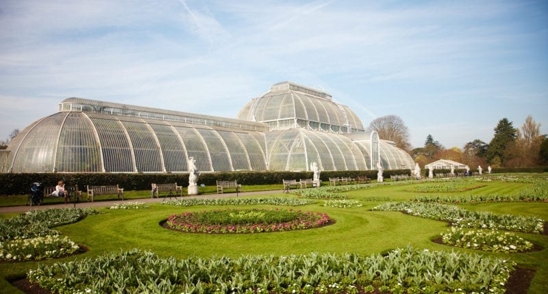 The Royal Botanic Gardens, Kew