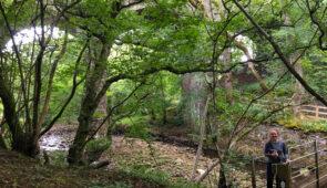 Walking from Slaggyford to Greenhead
