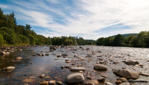 The River Spey near Aberlour