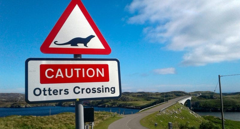 Otter Crossing, Outer Hebrides