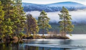 Scenery in The Cairngorms National Park