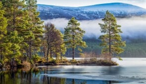 Winter scenery in the Cairngorms National Park