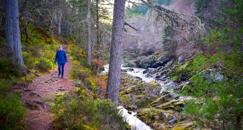 Winter walk from Logie Steading to Randolph's Leap