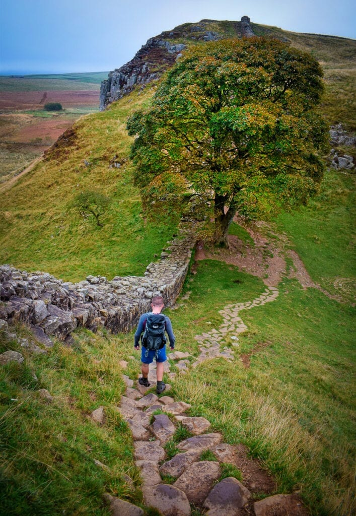 Sycamore Gap Hadrian's Wall Path