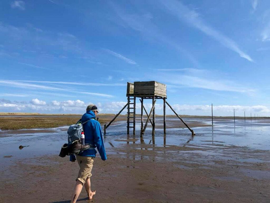 Crossing the Pilgrim's Path to Lindisfarne